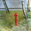 Hydrant (Jerzy Durczak) Tags: hydrant red trees