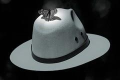 Ombre sur panama (mars-chri) Tags: chapeau panama monarque ejidodelrosario mexique