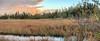 Wet Prairie header 02-20180214 (Kenneth Cole Schneider) Tags: florida miramar westmiramarwca