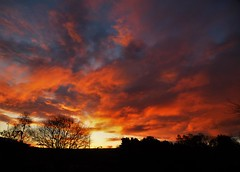 Friday's Fiery Sky..x (Lisa@Lethen) Tags: sunrise weather winter frosty cold nature cloud sun silhouettes fiery