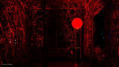 Blood Moon? (André Schlüter Photography) Tags: parkleuchten parkillumination gruga grugapark essen nrw deutschland nikon d850 nachtaufnahme nightshot bloodmoon