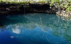 Cenote 1 (orientalizing) Tags: cenote cenotekikil desktop featured forest landscape mexico northamerica sinkhole swimminghole water yucatan