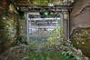 Notausgang? (Knee Bee) Tags: spinnerei abandonedfactory notausgang fluchtweg grün plants green factory industrial decay urbex
