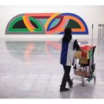 Frank Stella thumbnail