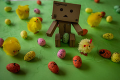 Danbo easter (priolo_vittoria) Tags: danbo revoltech amazon danboard toy toys figure cute beautiful easter pasqua spring danbolovers colorimage toyphotography stilllife canon5ds holidays chicks eastereggs colors grass green pulcini uova erba colorato little chickens composition