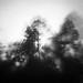 Teide_160525_6590