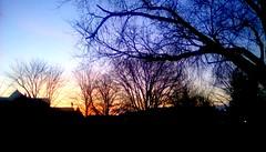Another gorgeous sunrise! - TMT 365/140 (Maenette1) Tags: morning sunrise trees neighborhood menominee uppermichigan treemendoustuesday flicker365 michiganfavorites project365