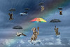 Raining Cats and Dogs edit3 (Chris Willis 10) Tags: rainbow umbrella protection rain weather illustration cloudsky concepts parasol sky backgrounds ideas vector business dogs cats blue nature storm safety animals falling