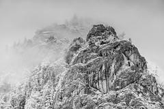 Foggy Röthelstein. (and.schweighofer) Tags: fuji fujifilm outdoor austria österreich fog foggy blackandwhite bw sw schwarz weis landscape landschaft nature natur trees bäume mountain berg fels rock gestein nebel