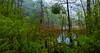 Verde y agua (Jesus_l) Tags: europa croacia plitvice parquenacional agua jesúsl