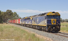 Kicking Up Dust (Joshua_Watson) Tags: mywee strathmerton dust train freighttrain tocumwal tocumwalcontainertrain tocumwaltrain victoria vic nswvicborder trees gumtrees australianlandscape countryvic cf blueandyellow b76 boxlocomotive levelcrossing northcentralvic goulburnvalley flat sun sunlight