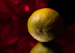 old lime (marinachi) Tags: macromonday macro lime citrus green closeup bokeh sundaylights