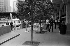 Strolling and Sipping.jpg (Milosh Kosanovich) Tags: chicagophotographicart epsonv750pro chicagoriverwalk chicago chicagophotoart kodaktmax100 mickchgo minoltax700 chicagophotographicartscom miloshkosanovich kodaktmaxrsdeveloper