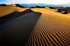 Death Valley Mesquite Sand Dunes Fine Art! High Res Nikon D810 Death Valley Fine Art Landscapes! Dr. Elliot McGucken Fine Art Landscape Photography! (45SURF Hero's Odyssey Mythology Landscapes & Godde) Tags: nikond810deathvalleyfineartlandscapesdrelliotmcguckenfineartlandscapephotography wideangle wideanglelens fineart nature fineartphotography naturephotography masterfineartphotography fineartphotographer elliotmcguckenfineart elliotmcguckenphotography elliotmcgucken naturephotos fineartphotos fineartnature racetrack playaracetrack sanddunes mesquitedunes rhyolite deathvalleyfineart