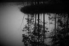 IMG_0017 (www.ilkkajukarainen.fi) Tags: suomi finlland finlandia eu europa scandinavia blackandwhite mustavalkoinen lake järvi water vesi uusimaa happy life monochrome travel traveling spring nature luonto