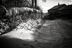 Bethany farm (Missy Jussy) Tags: bethanylane house building trees shadows light sunlight snow tree drystonewalls walls fence road path cold winter clouds outdoor outside countryside rural mono monochrome bw blackwhite blackandwhite canon canon5dmarkll 70200mm ef70200mmf4lusm ef70200mm canon70200mm 5d canon5d canoneos5dmarkii rochdale lancashire england unitedkingdom britishweather northwest