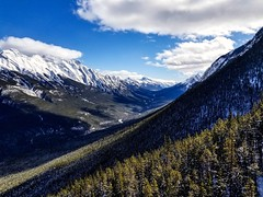 Views on the way up Sulphur Mountain. (L. Brannan) Tags: mountain range discover landscape canada explore sky snow winter mountainside tree forest nature beauty wonderland