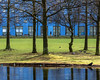 Blue Green (ARTUS8) Tags: baum farbe spiegelung frühling menschen colour color flickr personen gewässer park gras tree person gebäude building house reflection spring düsseldorf