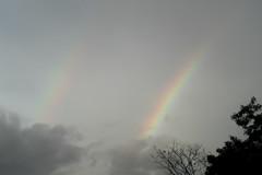 Rainbow (Mabelín Santos) Tags: rainbow arcoiris canonpowershotelph340hs panamá panama