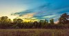 Bright Area Sunset (thefisch1) Tags: sunset colorful pasture horizon tree line sky
