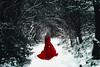 Snow day (Manadh) Tags: pentax pentaxian manadh portrait reddress snow forest wood greyhair girl woman alone