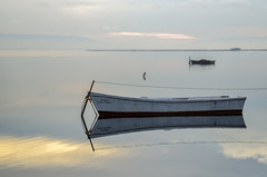 Alpaca, _DSC3713 (Francesc //*//) Tags: barca calma horitzó horizon deltadelebre deltadelebro mar agua aigua paisaje paisatge landscape azul blau blue bleu reflex reflejo reflection