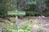 Tolkien Track (Wintrmute) Tags: styx tasmania australia au tolkien track