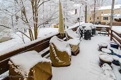 Back Deck - Midlothian, VA (Paul Diming) Tags: midlothianvirginia virginia snowstorm dailyphoto chesterfieldcounty storm pauldiming d7000 midlothian winter snow unitedstates us