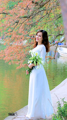 Beauty (khoitran1957) Tags: aodai people vietnam