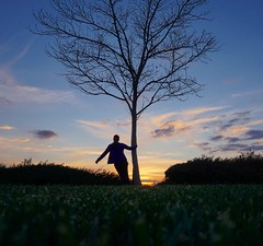 70/365 (boxbabe86) Tags: 100views treesilhouette tree treehugger sunday march silhouette colorful hillcrestpark park grass 10secondtimer timer sonya6000 sony sunset nature day70 365days