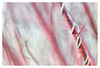 Dance of the Cornus (leo.roos) Tags: cornus red rood branches takken a7rii carlzeiss zeissikonvariotalonmc7012035 reversed talon projectorlens projectionlens darosa leoroos dayprime day70 dayprime2018 dyxum challenge prime primes lenzen brandpuntsafstand focallength fl 60nx