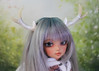 available antler set (Sparrow ♪) Tags: littlefee luna tan ts xhanthi yosd white antlers six points 6 pearl simple