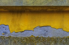 urban decay (gianmaria.colognese) Tags: muro giallo intonaco malta degrado decay segno decoro crusty