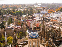 Sevilla (✦ Erdinc Ulas Photography ✦) Tags: sevilla spain spanish building house houses landscape view buildings bridge tree wall brick old cathedral street flag travel tower dome window glass water river people españa panasonic blue yellow traditional