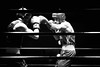 22687 - Jab (Diego Rosato) Tags: jab boxe boxing night boxelatina palaboxe ring nikon d700 70200mm sigma bianconero blackwhite rawtherapee
