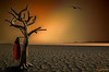 Aridness (dipphotos) Tags: redjacket jacket tree bird drought aridity aridness orange deadtree
