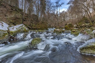 *Nature for Water @ The rapids of the Prüm*