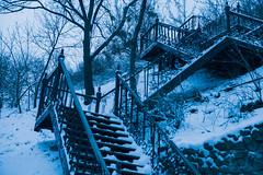 Winter in March (VladPL) Tags: winter wintercity march landscape upstairs trees snow snowtrees blue kiev ukraine cityscape лестница снег киев украина украинскаязима весна март деревья синий синийцвет spring canon 1ds 2470 2470l canondigital ukrainianlandscape niceview way path up cloudyday