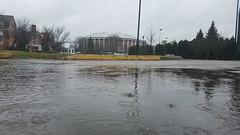 Convocation Center (dankeck) Tags: puddle rain convo ou athens ohiouniversity convocationcenter