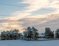 Snow in March - Kentucky (JuanJ) Tags: nikon d850 lightroom art bokeh nature lens light landscape white green red black pink sky people portrait location architecture building city iphone iphoneography square squareformat instagramapp shot awesome supershot beauty cute new flickr amazing photo photograph fav favorite favs picture me explore interestingness wedding party family travel friend friends vacation beach snow barn fence tree