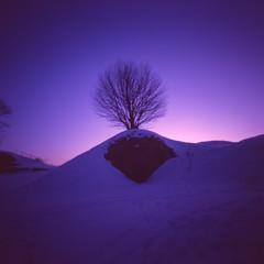 Arctic Night I (elfsprite) Tags: kodak ektachrome e200vs 200vs film arctic sunset suomenlinna sveaborg arktinen yö night vermeer66 pinhole neulanreikä auringonlasku helsinki colorreversal dia diafilmi expiredfilm
