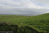 Cliffs of Moher - Fields of Green (Caroline Forest Images) Tags: trave roadtrip ireland countyclare republicofireland westcoast touristattraction tourist cliffs cliffsofmoher
