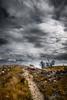 76/2018 (Salva Mira) Tags: camí camino path muntanya montaña mountain núvols nubes clouds valldegallinera marinaalta lamarina paísvalencià salvamira salva salvadormira
