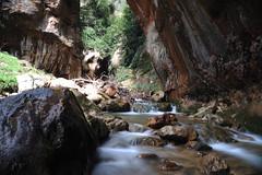 (Marwanhaddad) Tags: river long exposure spring nature lebanon