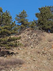 Joder Ranch (Boulder Flying Circus Birders) Tags: joderranchopenspace cityofboulderopenspaceandmountainparks osmp boulder colorado wildbirdboulder wildbirdcolorado wildbirdcompany formerwildbirdcenter notwildbirdsunlimited birdseed birdwalk saturdaymorningbirders stevefrye