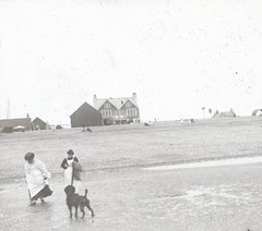 H01951 Beach scene c.1905 (unidentified) (East Sussex Libraries Historical Photos) Tags: beach sand maids dog shore buildings sea