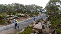 23rd February 2018 Best of Tasmania (Inspiration Outdoors) Tags: inspirationoutdoors inspirationoutdoorscomau inspirationoutdoorswalkingtours wwwinspirationoutdoorscomau tasmania tasmaniasbestdaywalks wineglassbay freycinet cradlemountain