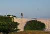 Dune girl and seagulls (Otacílio Rodrigues) Tags: céu gaivotas seagulls duna dune garota girl vegetação vegetation grama grass areia sand praia beach cabofrio natureza nature brasil oro