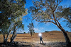 Obley (Bill Thoo) Tags: obley nsw newsouthwales australia night landscape travel explorer fullmoon moonlight bush country rural stars sony a7rii ilce7rm2 zeiss batis 18mm