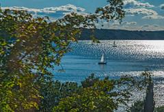 Into the Sunset (fotofrysk) Tags: sailboats sunshine kastela bay trees park water sea sky blue adriaticsea theadriatic marjampeninsula parksumamarjan marjansummitpark localbusride istriamontenegroroadtrip croatia split adriaticcoast dalmatiancoast sigma1750mmf28exdcoxhs nikond7100 201710079823